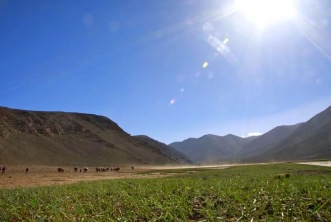 transhumance berbere  avec ait atta