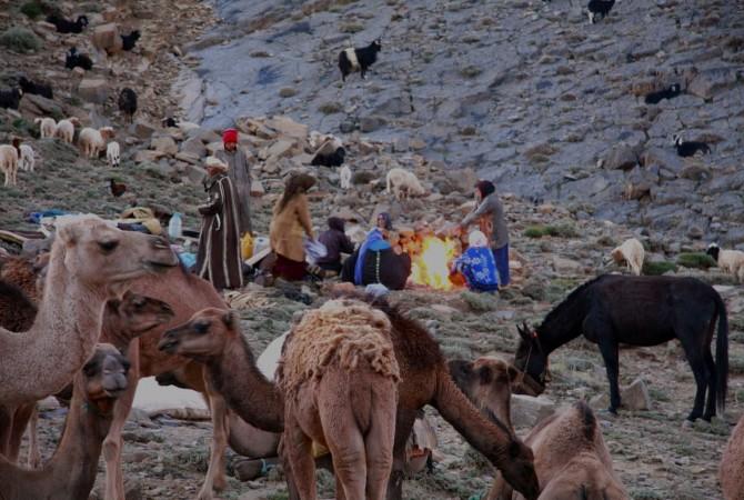 nomade ait atta