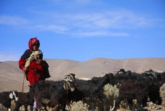 nomade du maroc
