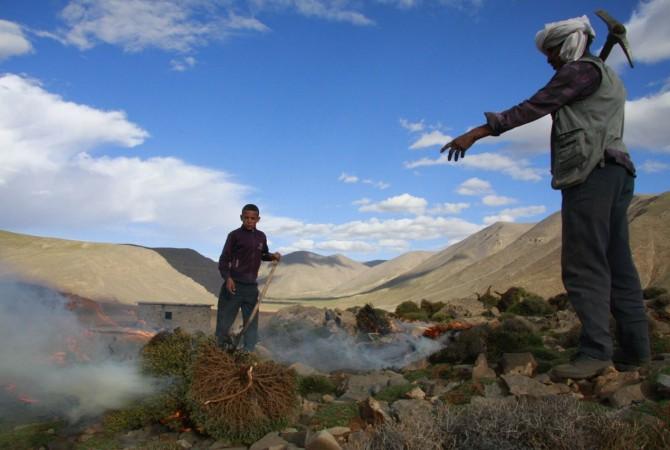 transhumance berbere maroc