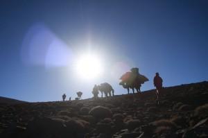 transhumance nomade maroc