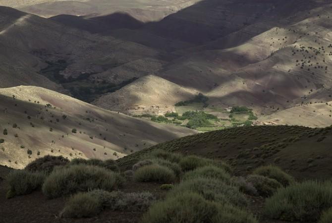 vallee des roses maroc