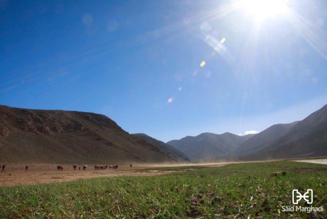transhumance-nomade-maroc