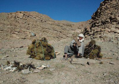 nomades maroc désert