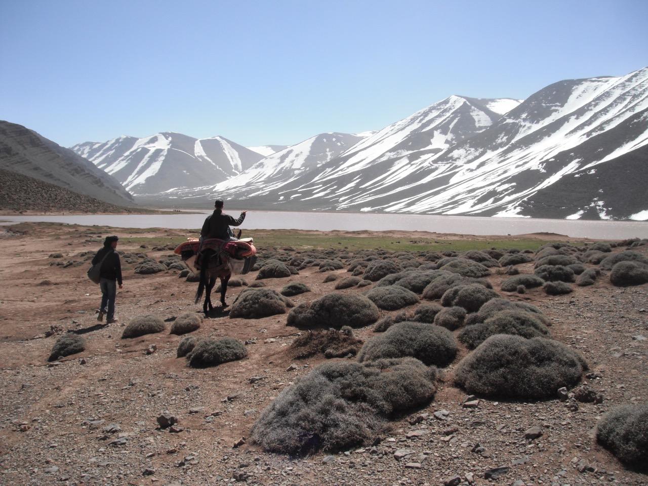 voyage maroc haut de gamme