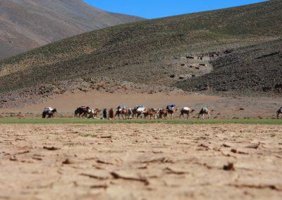 nomadic berber atlas